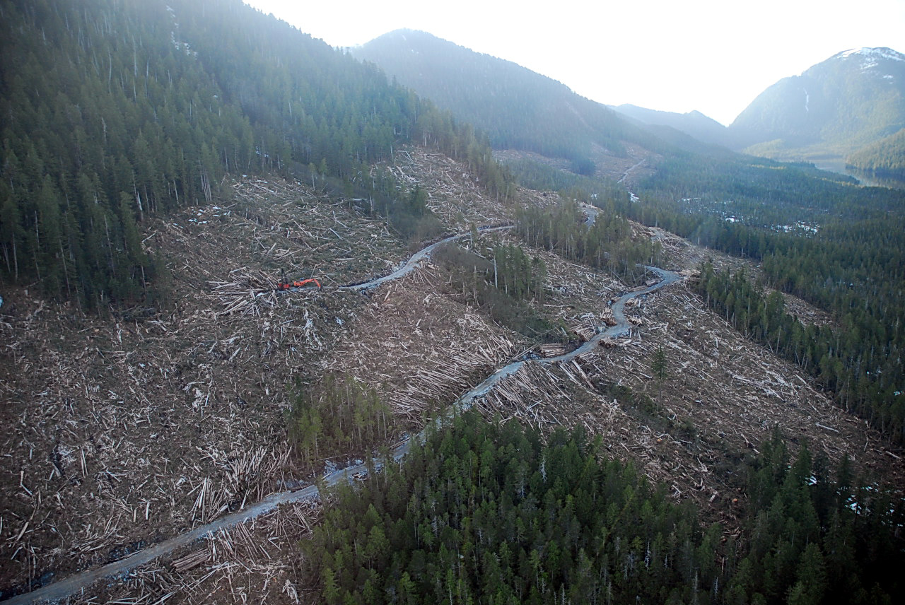 Image result for clearcut bc